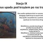Stacja IX