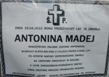 MadejAntonina0