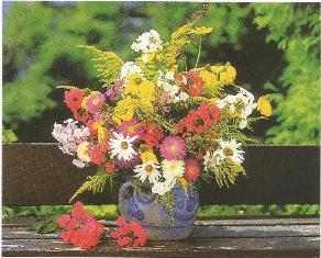 Kwiaty0